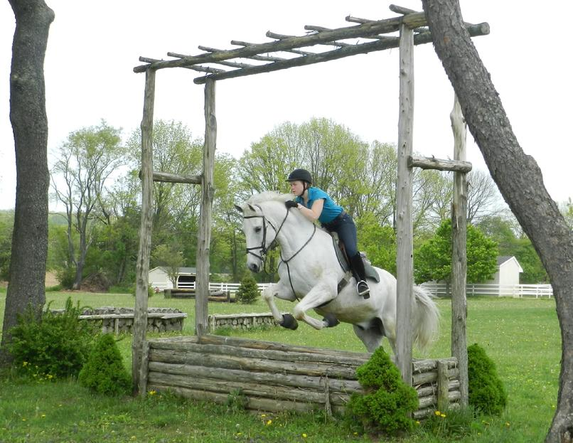 Jillian Egan specializing in Eventing and Dressage